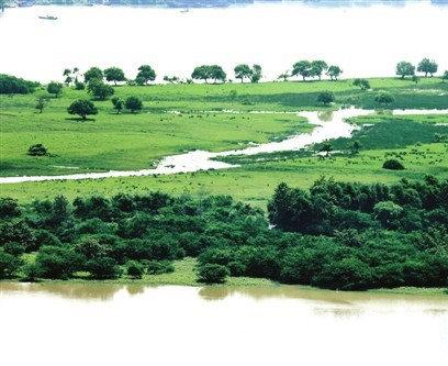 拟打造国际生态旅游岛 揭秘福州最后一片湿地龙祥岛