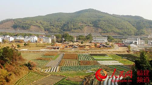 美丽乡村永安市霞鹤村见闻:田园变公园 村民变股民