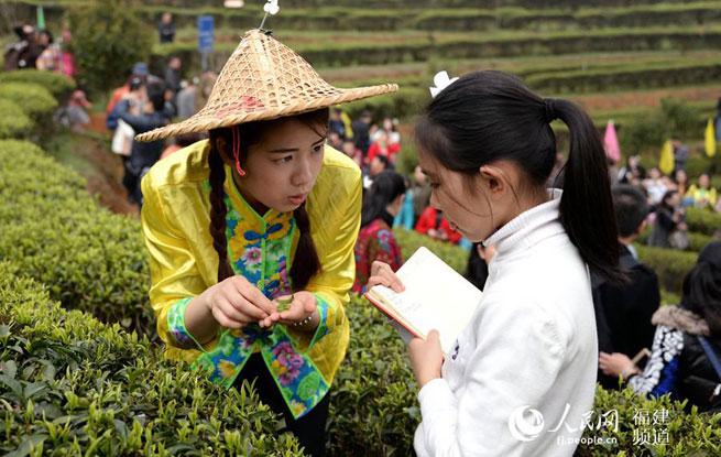 """傅天龙:""""数字化+文化""""让""""五和""""茶文化走向世界"""