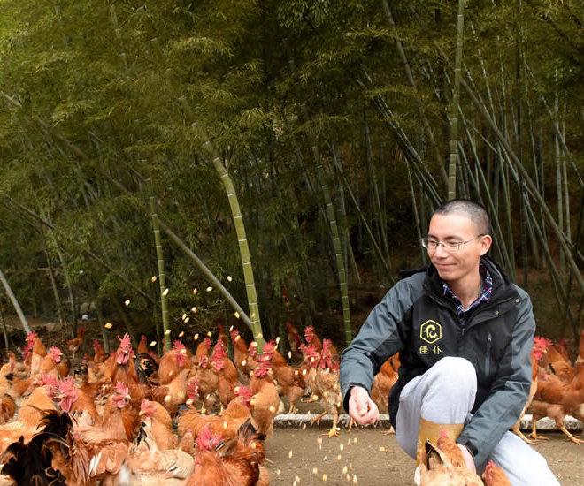 罗源一大学生回乡办起生态农场
