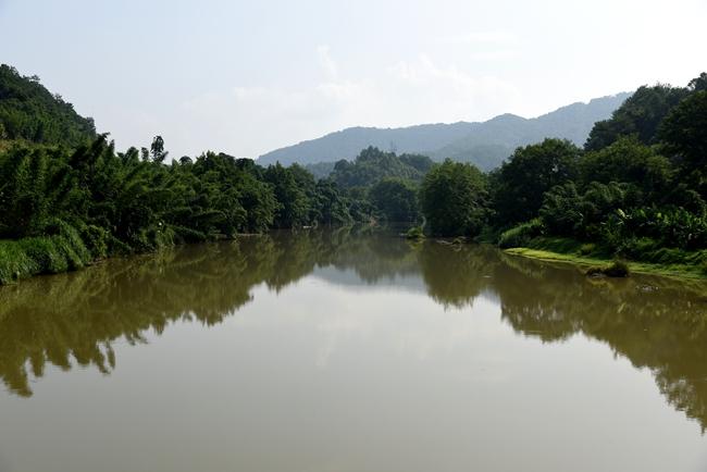 永定河湖雷段河水潺潺,草木葱茏,人与自然和谐相处。