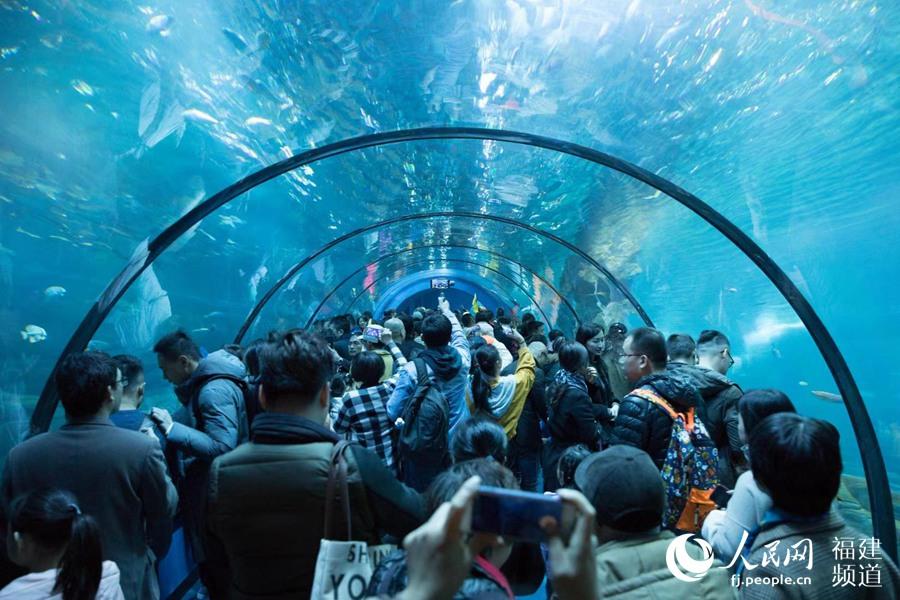 海洋+森林 凯发k8省打造海洋旅游新业态