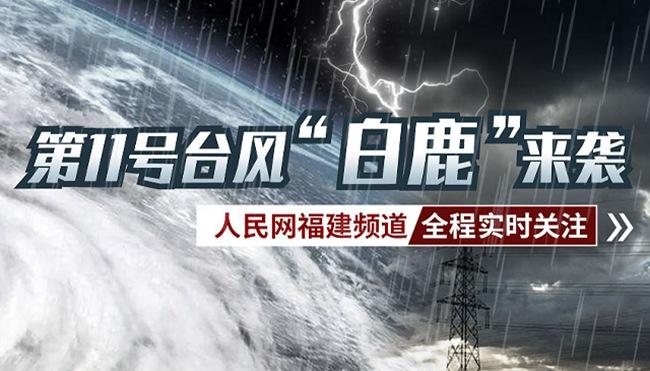 """台风""""白鹿""""减弱为热带低压初步统计造成福建直接经济损失1049万元"""