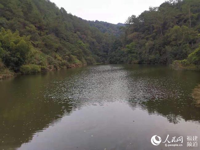 龙岩市永定鹊坪村:打造节水型新农村建设的全国样本