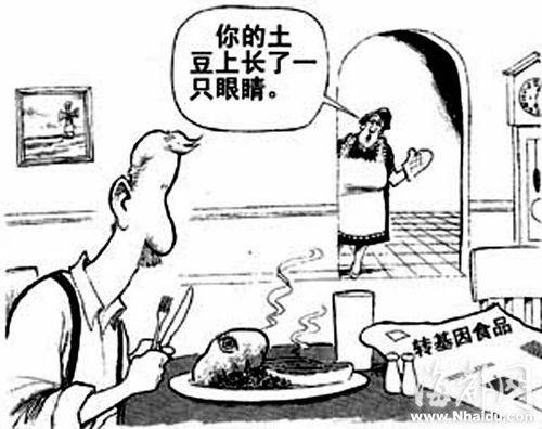 转基因大米有何危害_